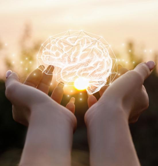 Mind Matters Institute